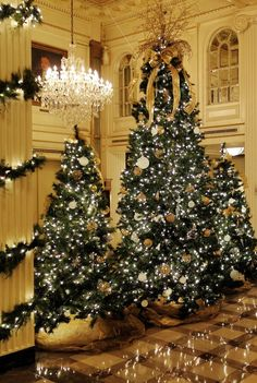 Christmas trees line the lobby of the beautiful Hotel Monteleone