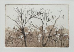 original etching and aquatint of woodland trees with birds