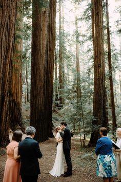 Intimate Wedding. Redwood Forest Elopement. California Wedding. Nashville Wedding Photographers. www.bradandjen.com