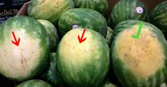 Watermelon is one fruit that is rich in benefits, especially for pregnant women. This fruit contains mostly water, very fresh to be consumed during the day. How to pick a sweet watermelon? Ripe Fruit, Fresh Fruit, Sweet Watermelon, Picking Watermelon, Watermelon Hacks, How To Choose Watermelon, Watermelon Ripeness, Watermelon Crafts, Fruit Picking