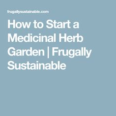 How to Start a Medicinal Herb Garden | Frugally Sustainable