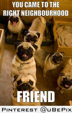 Ah, thanks pugs