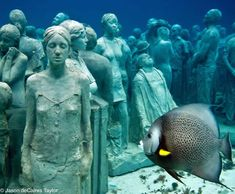 Wish I had known about this when I was there in 2010.  Underwater sculpture in Grenada, memorializing Africans who jumped or were forced overboard during the middle passage.  Intended as a foundation for new coral reef growth.