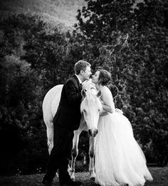 Asheville Wedding Photographer | High Meadow Events Wedding Teaser