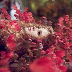 Fall by Nina Masic on 500px
