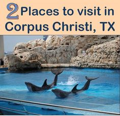 Visit these 2 Family Friendly places in Corpus Christi, Texas.  These fun destinations are close to Port Aransas and Mustang Island; popular beach vacation destinations in Texas. This family vacation have fun in the sun!