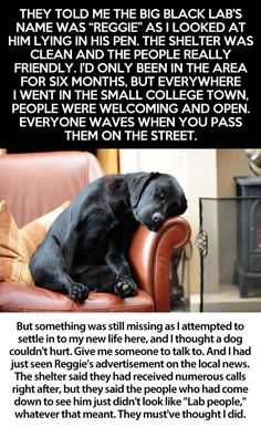 Take the time to read this story. If you love dogs, you'll cry like a baby! It still gets me.