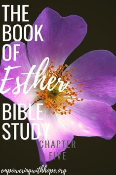 The Book of Esther Bible Study: Chapter Five