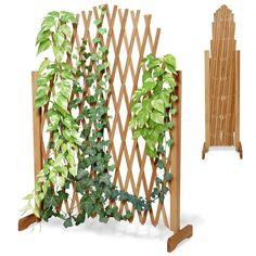 Pflanzen Gitter Holz Garten Balkon Spalier Terrasse Blumen Pergola Rosen Zaun