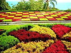 Jardim Botânico, Funchal, Madeira