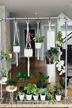 Aug 9 DIY Rolling Herb Garden is part of Indoor garden Aesthetic - My new obsession is having green house plants strategically placed around our home I love the idea of using plants as decor They help to purify the air… Herb Garden Design, Diy Herb Garden, Garden Landscape Design, Garden Plants, Garden Ideas, Pot Plants, Shade Plants, Landscape Architecture, Architecture Design