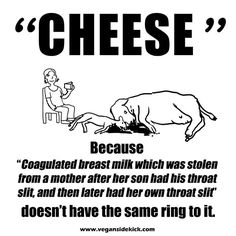 Do you still eat cheese? When you consume pain and suffering, you will live it...most likely contracting cancer fed by your animal consumption habits.