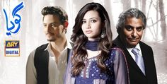 Goya Episode 19 Ary Digital Tv Drama 21st March 2015, Goya Episode 19 – 21st March 2015, Pakistani T...