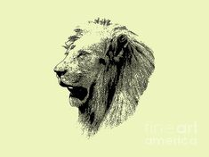 Fine Art America, Digital Art, Lion Sculpture, Statue, Portrait, Artwork, Animals, Design, Awesome