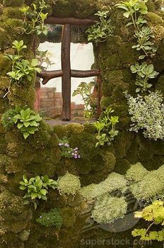 A moss covered garden wall by Superstock