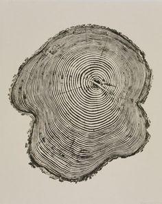 les + : ondes / arbre : idée à creuser