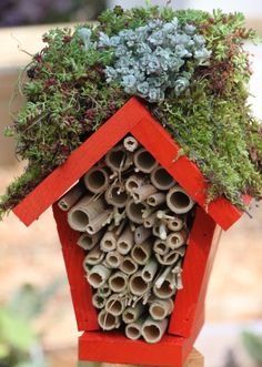 Make a Lady Bug Hotel : HGTV Gardens...better than pesticide