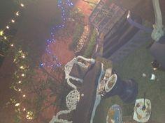 my garden at home <3