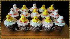 Cupcakes tema pet shop pintinhos