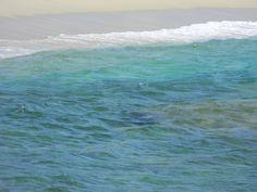 #Corsica #Corse ... la mer...