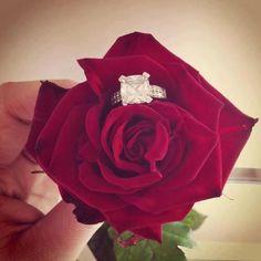 such a cute proposal idea!!!!!! <3