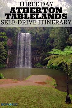 Millaa Millaa Falls - 3 Days in the Atherton Tablelands: The Perfect Self-Drive Itinerary - The Trusted Traveller