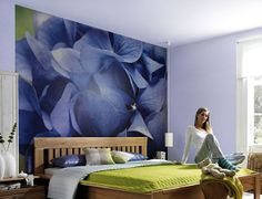 Kids Wallpaper Murals | Komar Photomurals | Komar Wall Murals