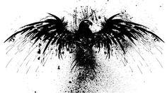 White, black, Swans, Bird  Birds wallpapers:  1443×1500 Black And White Bird Wallpapers | Adorable Wallpapers