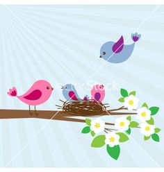 Family of birds vector on VectorStock®