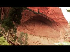Exploring Zion National Park in Springdale, Utah. Watch as we hike the Emerald Pools Trail, Canyon Overlook, Angels Landing and the Taylor Creek Trail. Zion National Park, National Parks, Springdale Utah, Utah Hikes, Travel Videos, Pools, Landing, Exploring, Emerald