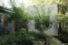 Beautiful, rustic & modern garden.