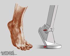 Anatomy 4 Sculptors | 출처: Anatomy 4 Sculptors