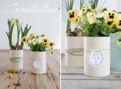 Upcycling Konserven-Dosen in Pastellfarben CreativLIVE Soft Colors, Pastel Colors, Shabby Boxes, Easter Table Settings, Sisal, Idee Diy, Container Flowers, Paint Set, Organic Beauty