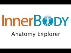 Using InnerBody's Anatomy Explorer  interactive website to help you study for a&p
