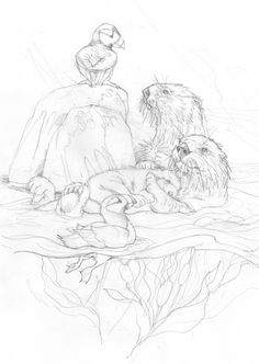 Bergsma Gallery Press::Paintings::Originals::Original Sketches::2013/Puffin With Love For Each Otter - Original Sketch