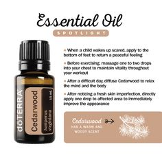 Cedarwood Essential Oil Spotlight