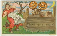Farm Woman & Cow with Jack O'Lanterns on Horns Vintage Halloween Postcard