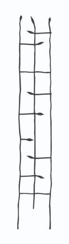 Panacea Products Narrow Forged Twig Trellis With Leaves, Black, 2015 Amazon Top Rated Trellises #Lawn&Patio