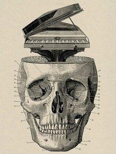 Dion Ochner #skulls