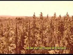 Historias de éxito de los exportadores bolivianos de quinua - CABOLQUI Bolivia