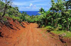 Una isla paradisiaca se queda sin habitantes y tú podrías salvarla ¡Vive en ella!