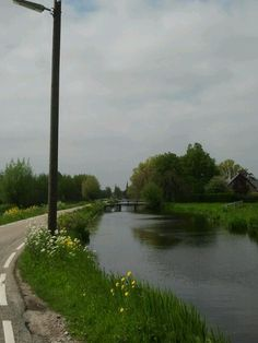Near Reeuwijk