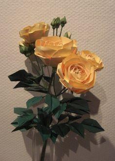 Naomiki Sato Roses