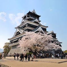 Japanese Castle, Shiro, Kumamoto-Jo.