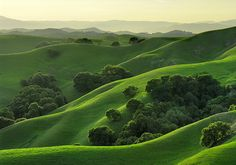 The rolling hills of California (Briones Regional Park in his hometown Contra Costa County). The Places Youll Go, Places To Go, Wonderful Places, Beautiful Places, Green Landscape, Nature Photos, Beautiful World, Cool Photos, Surfing