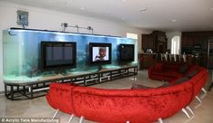 Always something to watch: The TV room features one large tank fronted by three flatscreen TVs