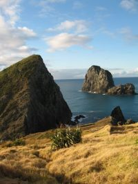 Looking Out Over Cape Brett - New Zealand