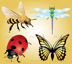 #Insects - #Animals #Characters Download here: https://graphicriver.net/item/insects/4005028?ref=alena994