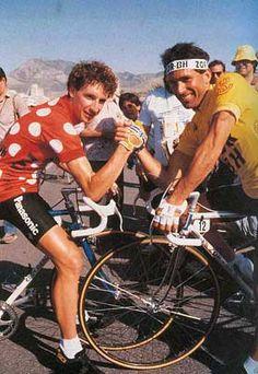 1986. PINO & MILLAR