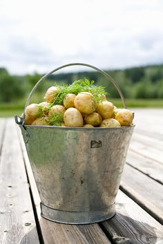 swedish new potatoes! boil the potatoes and stir in a knob of butter and lots of freshly chopped dill before serving heavenly! Fresco, The Swede, Scandinavian Food, Danish Food, Swedish Style, Swedish Recipes, Down On The Farm, The Fresh, Country Living